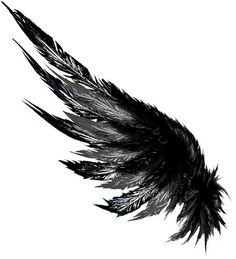 Icarus Ink Wing tattoo by Brandon McCamey, via Behance | #wings #asas #ilustração #illustration #tattoo