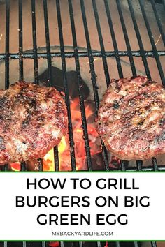 You just can't go wrong with Burgers, but these burgers will surely take your taste buds to the next level! Pair this Mesquite and Cow Lick Seasoning by Dizzy Pig with the Big Green Egg or Kamado Joe and you'll surely be satisfied with the outcome! Easy Bbq Recipes, Healthy Grilling Recipes, Tailgating Recipes, Vegetarian Grilling, Smoker Recipes, Barbecue Recipes, Barbecue Sauce, Vegetarian Food, Beef Recipes