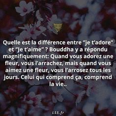 Puis personnes ne comprendra the difference between I love you and I adore you Love Life Quotes, Best Quotes, Citations Business, Crazy Mind, Je T'adore, Buddha Quote, Quote Citation, I Adore You, How To Speak French