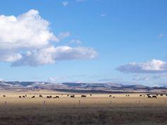 Laramie, Wyoming