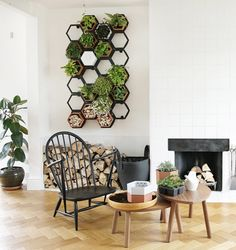 Designed by Horticus to bring plants into small indoor spaces, the system combines a hexagonal metal trellis frame that is screwed to a wall with hexagonal terracotta plant pots. Living Wall Planter, Vertical Wall Planters, Vertical Garden Design, Vertical Gardens, Indoor Living Wall, Concrete Planters, Vertical Bar, Plants On Wall Indoor, Metal Wall Planters