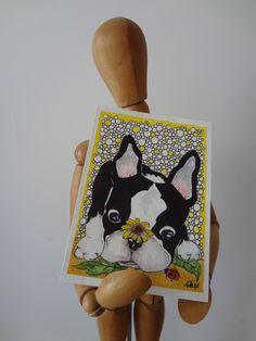 Disegno in formato ACEO, piccola miniatura da collezione con un piccolo Boston Terrier curioso :-)