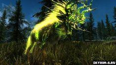 Skyrim 5, Skyrim Mods, Elemental Powers, Cactus Plants, Ethereal, Northern Lights, Nature, Painting, Naturaleza