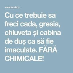 Cu ce trebuie sa freci cada, gresia, chiuveta și cabina de duș ca să fie imaculate. FĂRĂ CHIMICALE! Hand Embroidery Videos, Book Folding, Clean House, Good To Know, Cleaning Hacks, Life Hacks, Diy And Crafts, Household, Reading