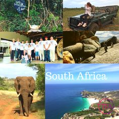 One of the most amazing experiences we've ever had! South Africa is kid friendly! We know the best places to go. South Africa Holidays, Group Travel, Holidays With Kids, Travel Agency, Holiday Travel, Perth, The Good Place, Safari, Places To Go