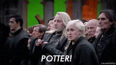 —¡Ahh!— gritaron todos y Harry corrió en dirección a Voldemort