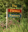 Flower Factory in Stoughton, WI.  Great catalog but well worth the trip if you're near the area.  Spring is coming!