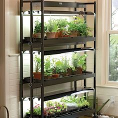 Ikea introduce a hydroponic indoor gardening kit hydroponics hydroponic indoor gardening kit see more start plants from seed grow herbs houseplants and even orchids t5 bulbs workwithnaturefo