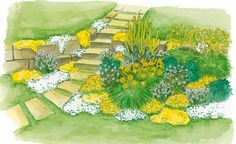 Da der Garten am Hang liegt, ist er mit einer Natursteinmauer terrassiert. Eine schöne Kulisse für das fröhliche Beet in Weiß und Gelb.