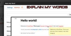 Explain My Words WordPress Plugin