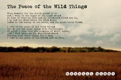 """One of my favorite poems of all time: """"The Peace of the Wild Things"""" by Wendell Berry"""
