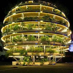 Amazing hydroponic system.