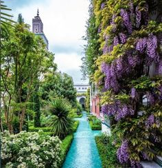 🌳🌳🌳 La Grande Mosquée De Paris - A gorgeous display of wisteria accents this already stunning garden. A must see in Paris. Wonderful Places, Great Places, Beautiful Places, Amazing Places, Paris Mosque, Velo Paris, Paris Secret, Plan Paris, Paris Bucket List