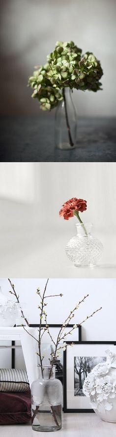 My Flower Epiphany...