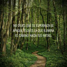 """""""No dejes que tu #Esperanza se apague, ella es la que ilumina el camino hacia tus #Metas."""" #Citas #Frases @Candidman"""