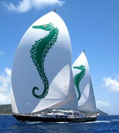Axia, a ketch with nice spinnakers. The 2012 Bucket in St. Barth's.