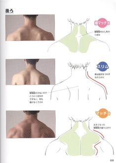 Reference Guide for Drawing Male Muscles – 160 fotografías Man Anatomy, Muscle Anatomy, Body Anatomy, Anatomy Art, Body Reference Drawing, Guy Drawing, Anatomy Reference, Art Reference Poses, Drawing Faces