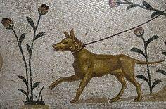 The Ancient World   historyfilia:  Roman Dogs Names  Dog Mosaic at the...