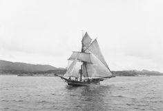 [Hardangerjakt ca. Sailing Ships, Boat, Boating, Boats