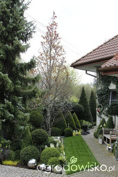 Ogród nie tylko bukszpanowy - część iii Boxwood Garden, Topiary Garden, Modern Landscaping, Backyard Landscaping, Landscape Design, Garden Design, European Garden, Summer Garden, Dream Garden