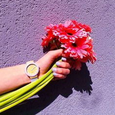 Catch springtime in the High Noon Watch (http://www.nastygal.com/product/high-noon-watch/)