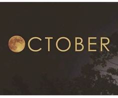 halloween … And my birthday month. Seasons Of The Year, Best Seasons, Months In A Year, Seasons Months, Kitchen Witch, Holidays Halloween, Halloween Fun, Halloween Pictures, Halloween Sayings