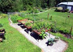 I am looking forward to planting my garden