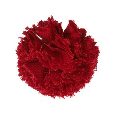 Carnation | Gallery Red