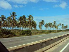 Salsa Com Pimenta: Mais Alagoas - Dunas de Marapé