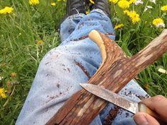 Carving the yew-tree wood #yew #eibe #eibenwald #eibenbaum