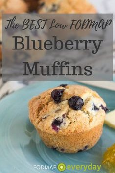 Looking for a recipe for a traditional blueberry muffin? Our Low FODMAP Blueberry Muffins is it! When I develop low FODM Fodmap Recipes, Gourmet Recipes, Snack Recipes, Gf Recipes, Healthy Recipes, Best Blueberry Muffins, Blue Berry Muffins, Blueberry Recipes, Fodmap Diet