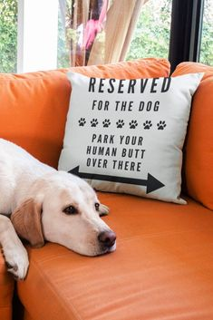 "for the Dog Decorative Pillow ""Reserved for the Dog"" funny home decor throw pillow for dog lovers!""Reserved for the Dog"" funny home decor throw pillow for dog lovers! Dog Home Decor, Funny Home Decor, Dog Lover Gifts, Dog Gifts, Gifts For Dogs, Dog Bedroom, Bedroom Furniture, Food Dog, Dog Rooms"
