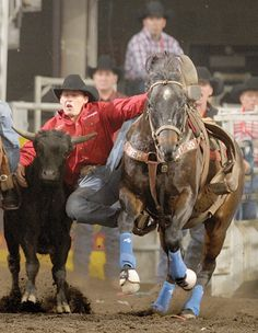 103 Best Rodeo Photography Images Rodeo Rodeo Life