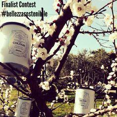 Contest #BellezzaSostenibile 2014! 6° finalist! The author is GiuzzaEnrica!
