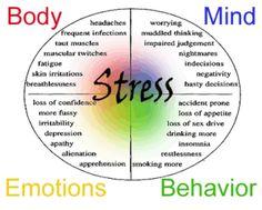 This shows an example of the four elements of Psychosis symptoms. It demonstrates the purpose of what each one means and how they are effected by those symptoms.