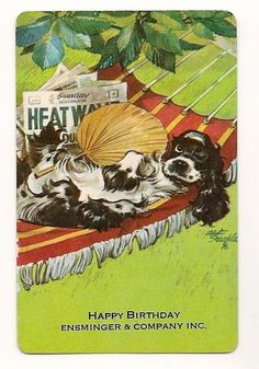 Swap Playing Cards 1 single Butch Dog Staehle Hammock with Advert