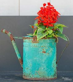 Turn an antique watering can into a planter! Love the aqua patina...