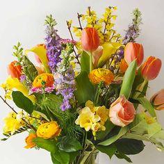 Blumenlexikon   floraheld.de