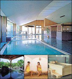 Hot Springs | Gotemba Kogen Resort Japan Info, Hot Springs, Outdoor Decor, Travel, Home Decor, Spa Water, Viajes, Decoration Home, Room Decor