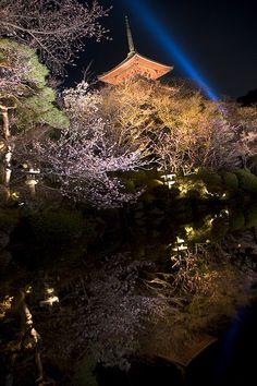 Wonderful view in Kyoto, Japan