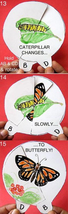 Clique na foto que tem o passo a passo para fazer o recurso!! A metamorfose da borboleta!