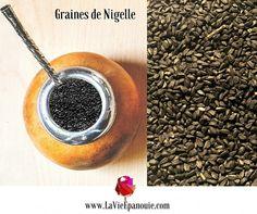 Propriétés, Bienfaits et Usages des Graines de Nigelle
