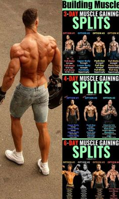 The Essential Multi-joint Exercises & Training Splits That Will Get You Ripped Fitness muscle fitness Fitness Workouts, Body Weight Training, Strength Training Workouts, Training Plan, Fitness Motivation, Training Exercises, Fitness Memes, Motivation Quotes, Weight Lifting