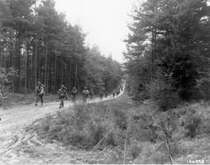 US soldiers of F Company, 2nd Battalion, 16th Infantry Regiment, 1st Infantry Division travel through the Hürtgen Forest near Hamich, Germany, during Operation Queen - 18 November 1944