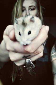 me hamster