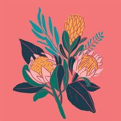 Watercolor Paper Texture, Watercolor Background, Artichoke Flower, Australian Wildflowers, King Protea, Rose Gold Texture, Protea Flower, Celebration Background, Flower Sketches