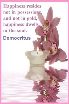 *Happiness Resides Not In Possessions And Not In Gold, Happiness Dwells In The Soul! -Democritus