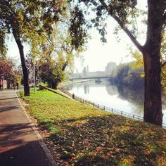 Crisul Repede intr-o zi de toamna   Oradea in imagini Sidewalk, Country Roads, Romania, Side Walkway, Walkway, Walkways, Pavement