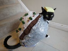 Proof Cats Are Cool Even in Costumes Crazy Costumes, Pet Costumes, Homemade Halloween Costumes, Halloween Diy, Sushi Cat, Cat House Diy, Cat Sketch, Cat Facts, Cats And Kittens