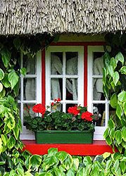 Thatched cottage, County Limerick, Ireland - This is a very quaint town -